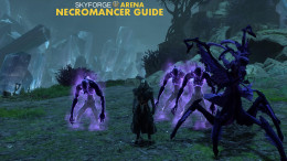 Skyforge Necromancer Guide